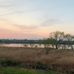 筑後川の河川敷