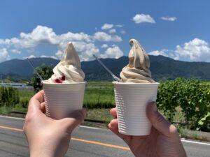 ミルン牧場のソフトクリーム